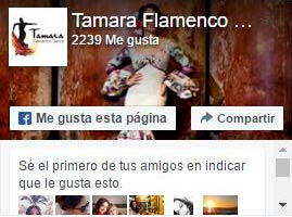 Facebook pagina Oficial